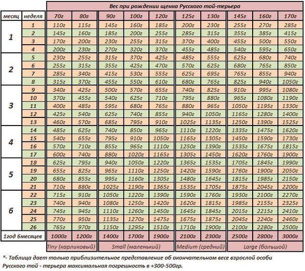 Таблица роста и веса Русского той-терьера