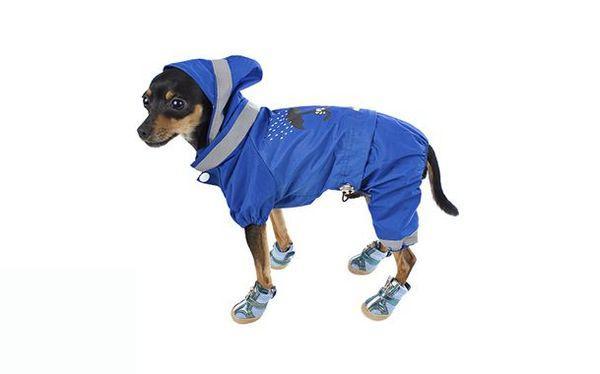 Одежда шьется только по меркам каждой собаки