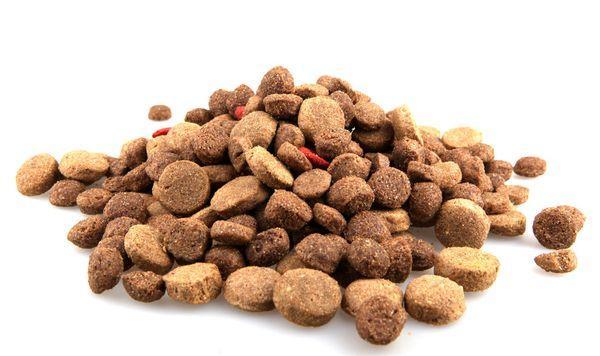 При кормлении пса сухими составами временами приобретайте полувлажные смеси