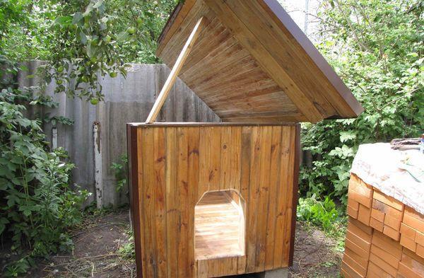 Будка алабая должна иметь съемную крышу
