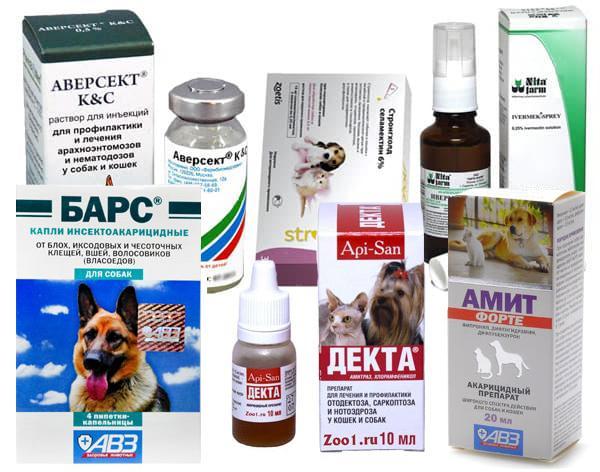 Средства для лечения отодектоза собак