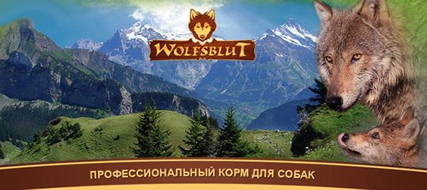 Производитель акцентирует на том, что собаки, как и волки, являются хищниками