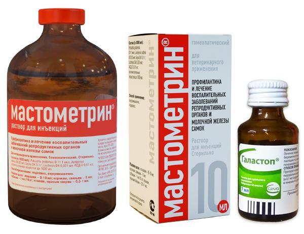 Мастометрин и раствор Галастопа - эффективне лекарства при ложной беременности