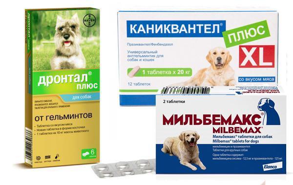 Таблетки считаются самым эффективным средством