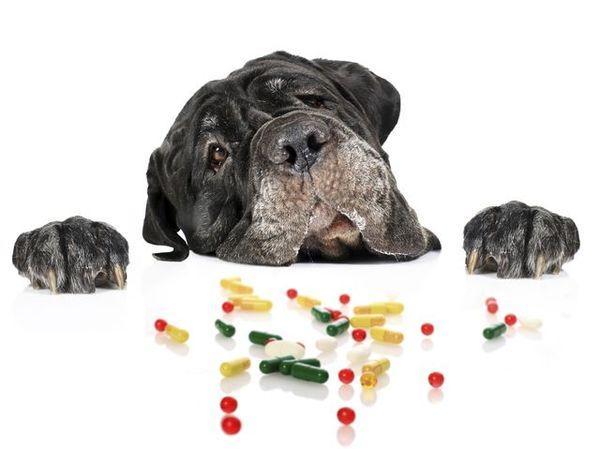 Дископатию на ранней стадии можно лечить медикаментами