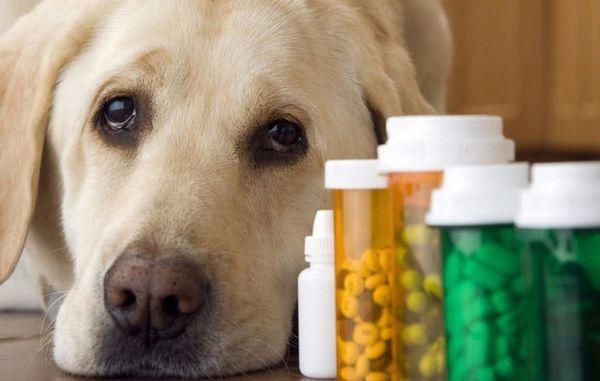 Лекарственные вещества могут вызывать повреждение слизистой