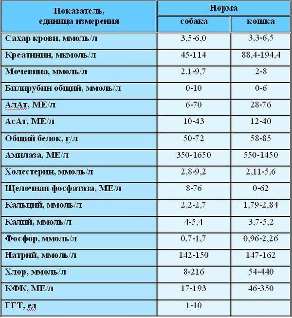 Биохимический анализ крови у собак