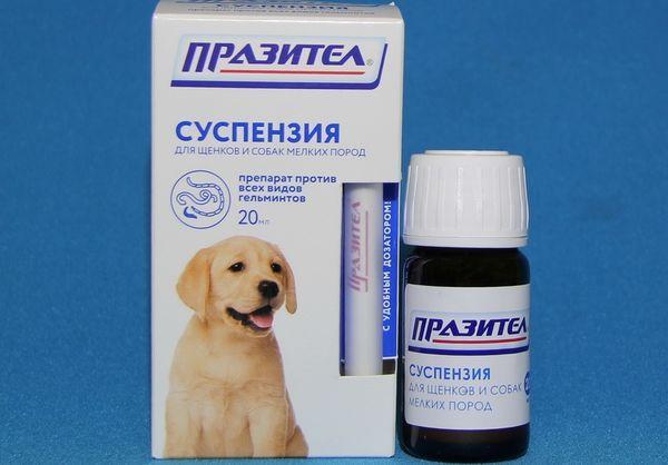 «Паразител» для собак мелких пород и щенков