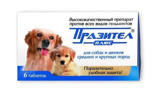Суспензия для собак средних и крупных пород