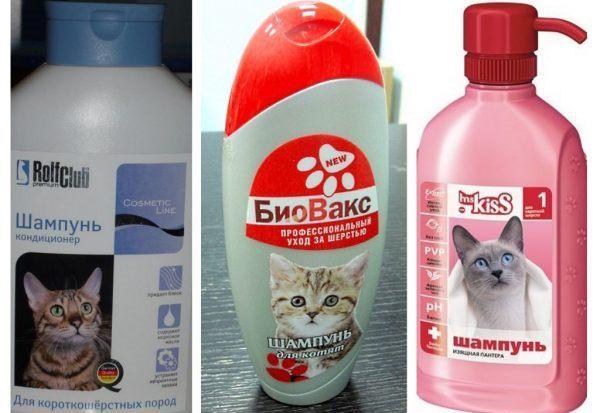 Популярные лечебные шампуни от блох для котов