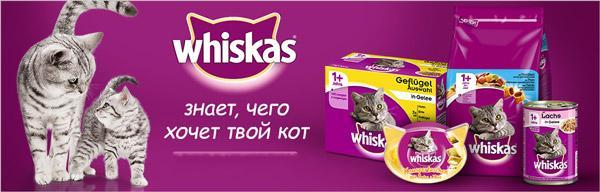 Кошачий корм Whiskas является продуктом экономкласса