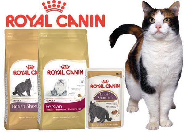 Повседневный корм для кошек