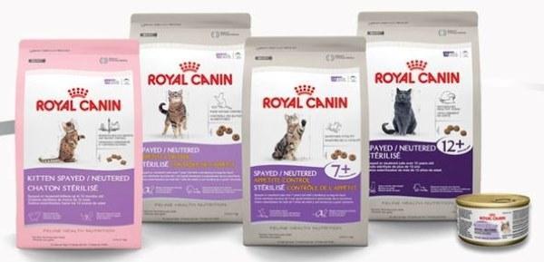 Аллергию у кошек вызывает белок, содержащийся в определенных продуктах