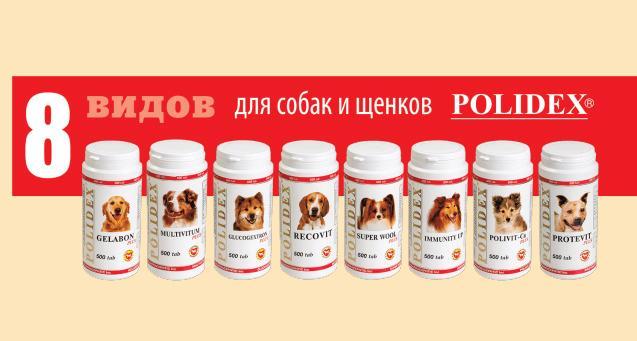 Витаминный комплекс «Полидекс» для собак